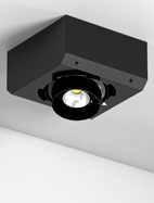 Surface Gimbal Series Directional Church Light Fixture